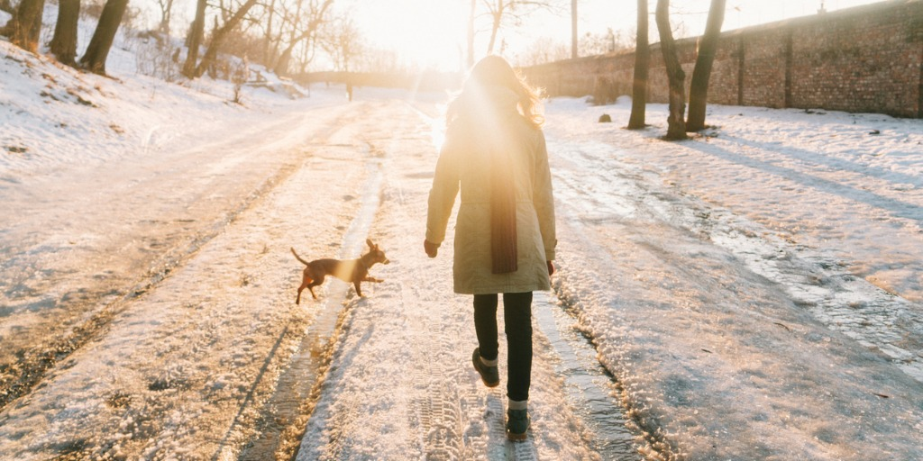 woman walking down a winter road with a small dog.health benefits from walking concept