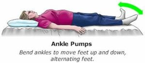 Ankle pump exercises