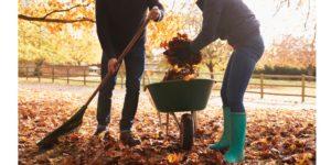 mature couple raking autumn leaves in garden