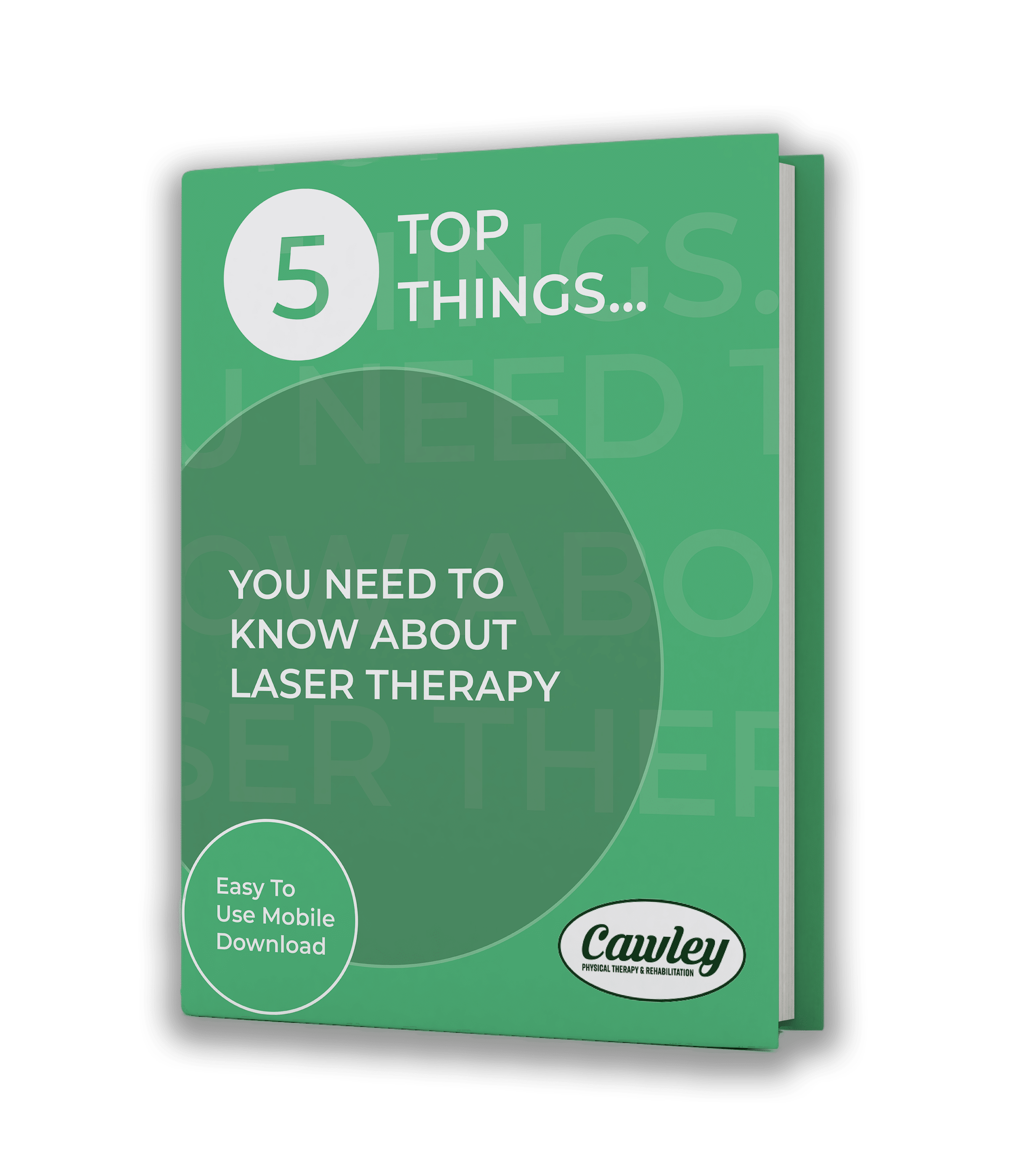 5 Top Things You Need to Know About Laser Therapy