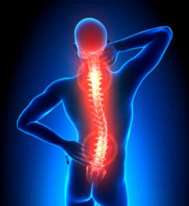 Pain points in the spine